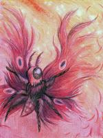DaniCrain-Dark-Moth